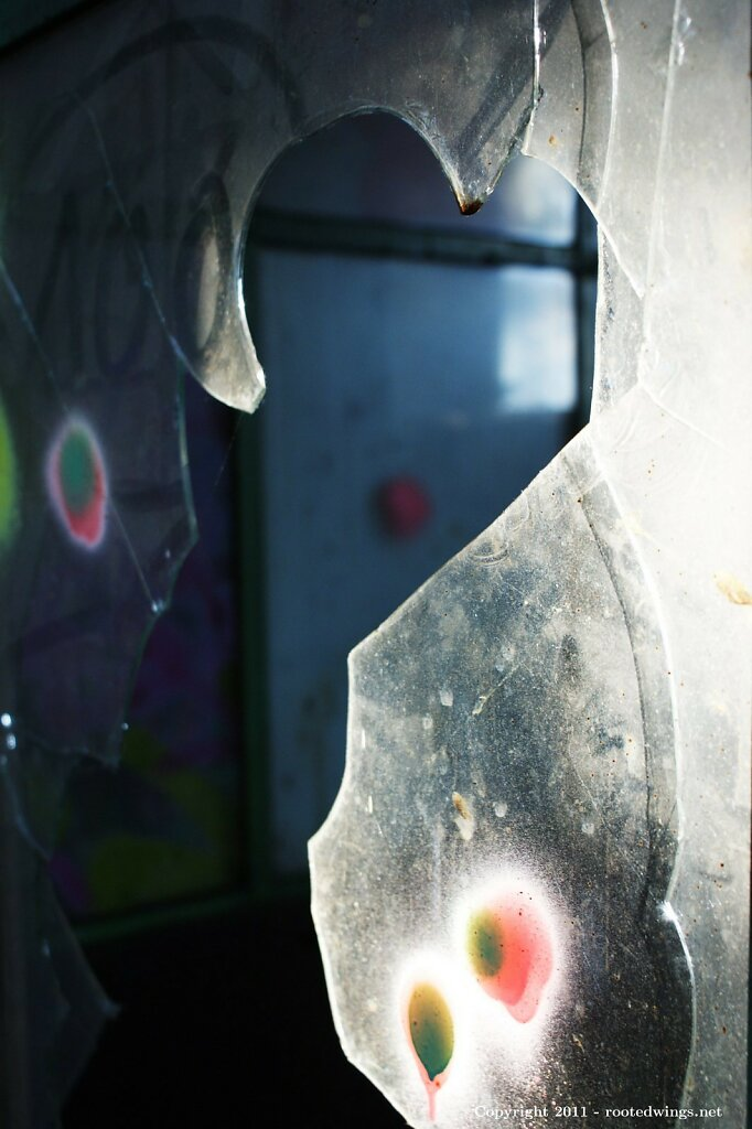 play of light. by sas